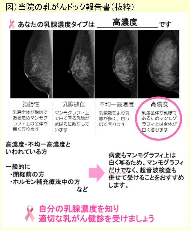 乳がんドック報告書(抜粋)